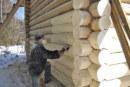 Нанесение антисептика сделает срок службы дерева больше